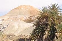 Desert Lodging
