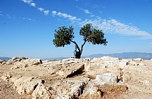 Israel 2 & 3 Days Tours