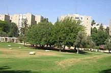 Judea & Jerusalem